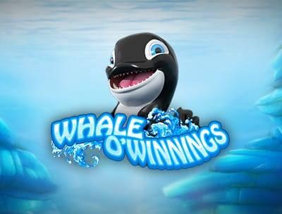 Whale O' Winnings