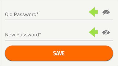 Image - Password - New Password - EN